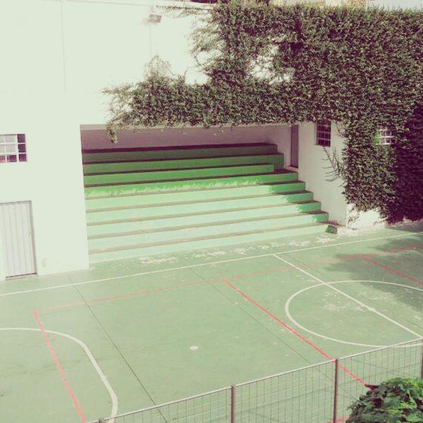 Escola-Novo-saber-Photos-007