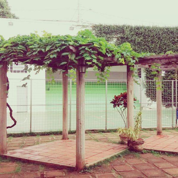 Escola-Novo-saber-Photos-011