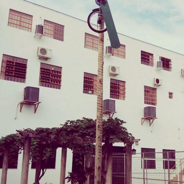 Escola-Novo-saber-Photos-012